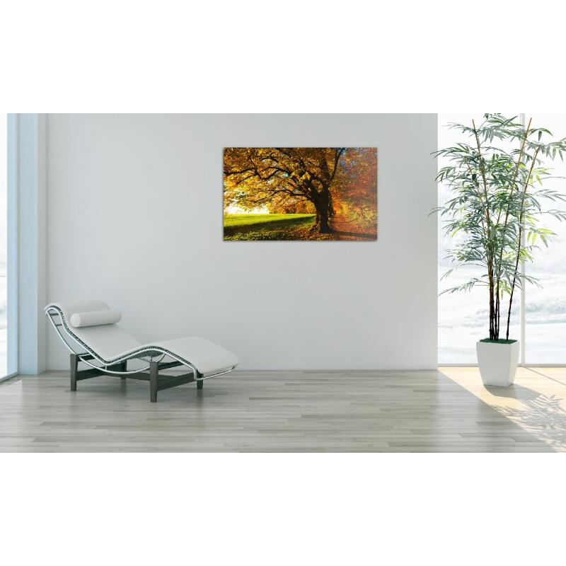 infrarotheizung glasbild mit 250 watt 879 00. Black Bedroom Furniture Sets. Home Design Ideas