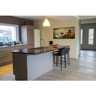 infrarotheizung glasbild mit 250 watt 979 00. Black Bedroom Furniture Sets. Home Design Ideas